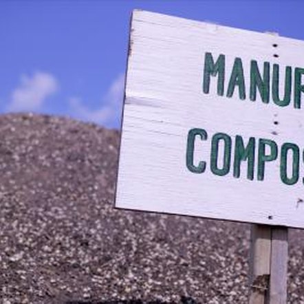 Composted manure teems with organic life, perfect for growing hotbed plants.