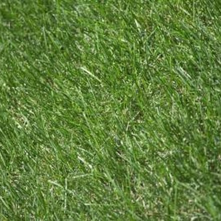 A worn mower belt can lead to slow or clogged grass discharge.