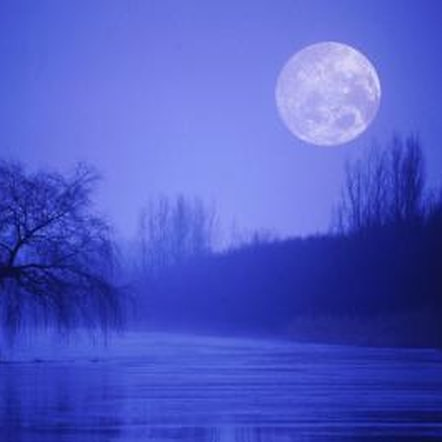 Ancient Romans believed pruning trees should be done after the full moon.