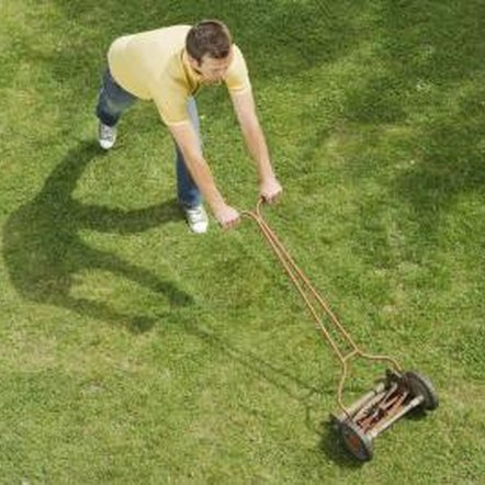 Scalping a lawn can damage grass and encourage weeds.