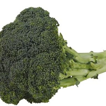 Broccoli sprouts contain a higher concentration of vitamins than broccoli heads.