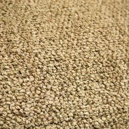 Properly installed carpet should be flat and free of ripples and buckles.