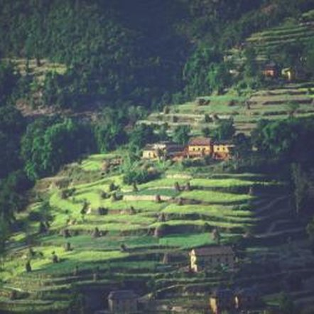 Terraces have made food production possible in difficult sites the world over.