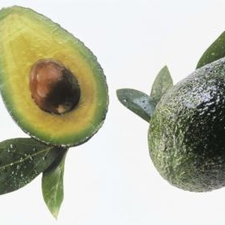 Each avocado holds one large, oval seed.