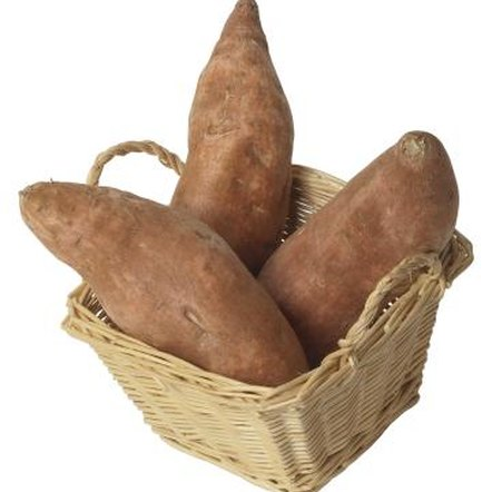 There are over 150 species of yams.