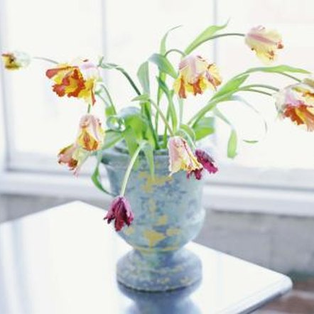 Transform a ceramic vase into a tabletop fountain.