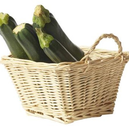 Courgettes are the most commonly grown squash in the United States.