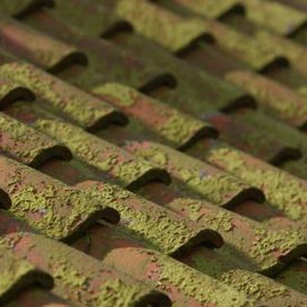 Moss can damage a roof.