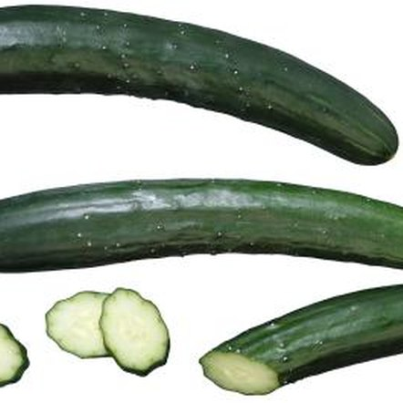 Pollination is an important step in producing fresh cucumbers.