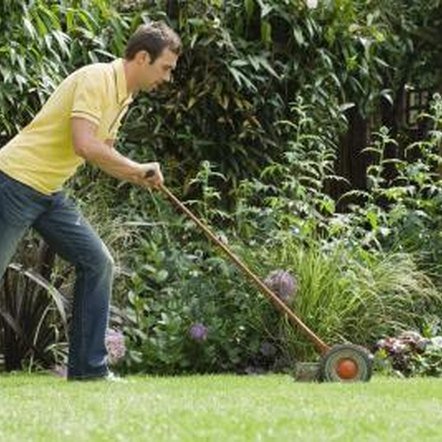 Cut the lawn early and often to get small clippings that compost quickly.