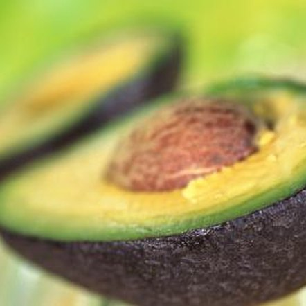 Because avocados are pricy in stores, growing Hass avocado trees can save you money.
