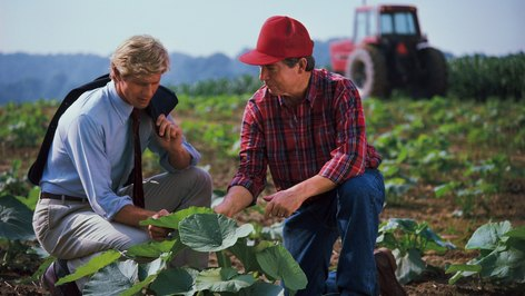 The Advantages to an Agricultural Inspector Job