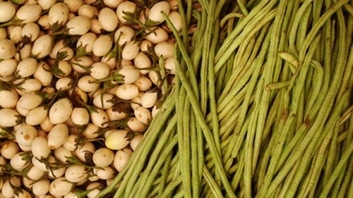 <p>Legumes are high in carbohydrates.</p>