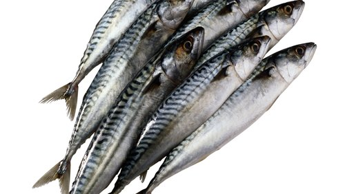 <p>Not only are fish oils a good source of omega-3 fatty acids, but they can boost HDL as well.</p>