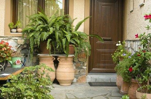 Arrange a Container Garden
