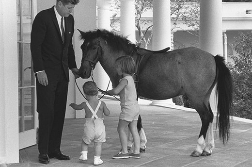 Macaroni the Pony and Other Presidential Pets