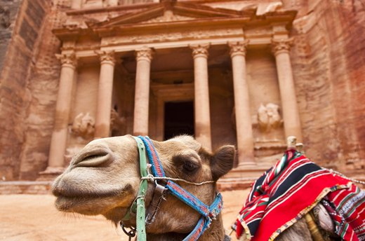 Take a Pilgrimage to Petra