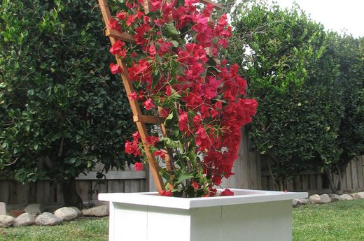 Elegant Garden Planter Box
