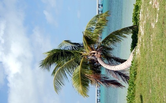 Key West's beaches are ideal for snorkeling and fishing.