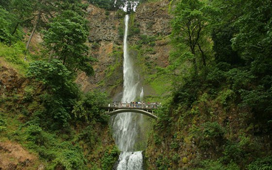 Multnomah Falls is the tallest of the Columbia Gorge waterfalls.