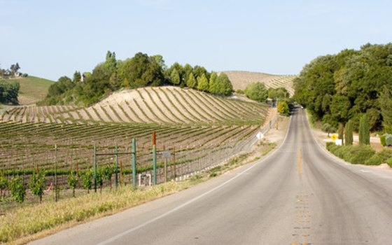 Following a winery trail map near Austin allows visitors to decide their own pace and preferred destinations.