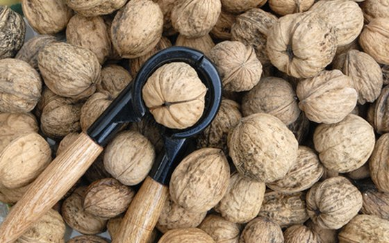 Walnuts are a prized crop in the region