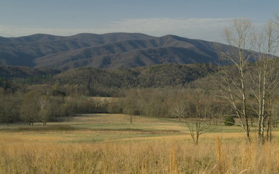 Visitors to national parks like Great Smoky Mountains will find many interpretive and educational resources.