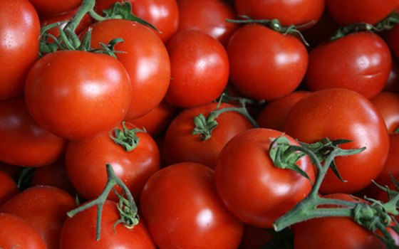 Tomatoes are a common market crop.