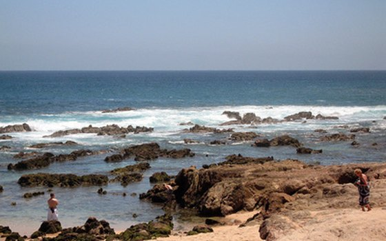 Beach shoes can protect feet on the Los Cabos rocky shoreline