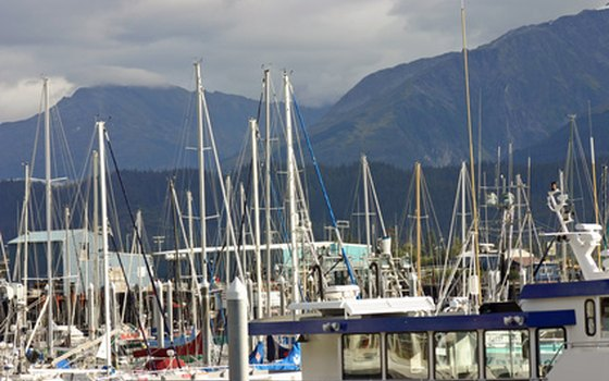 Seward Harbor is a good place for bald eagle watching.
