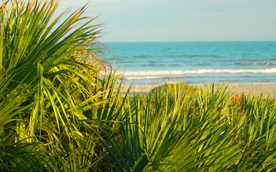 Beautiful coastal vistas are one reason couples choose Myrtle Beach for a wedding.
