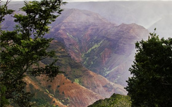 Take a shore excursion to Kauai's Waimea Canyon.