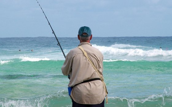 Oceanside california rv parks usa today for Florida out of state saltwater fishing license