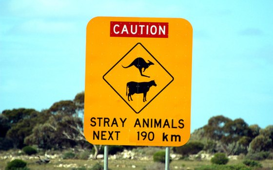 You'll see some unusual signs as you drive in Australia.