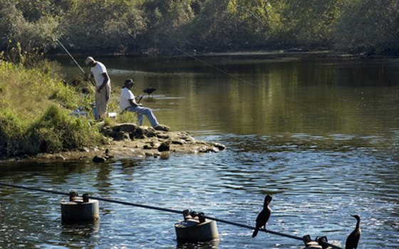 The Tampa Bay area's freshwater rivers and lakes offer great fishing.