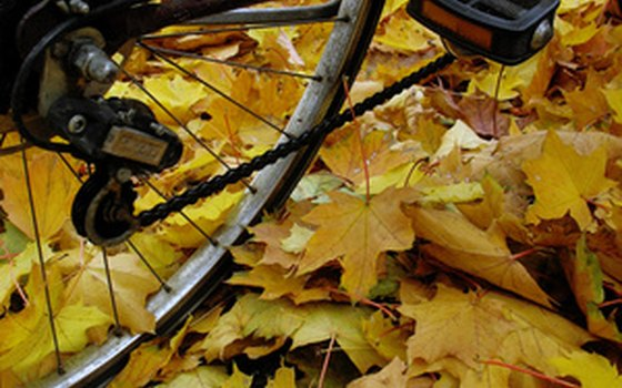 Get advice from outdoors experts about biking gear and training.