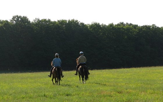 Combine sport with sightseeing when you visit European castles on horseback.