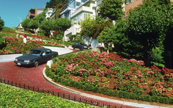 Drive with ease and caution down Lombard Street.