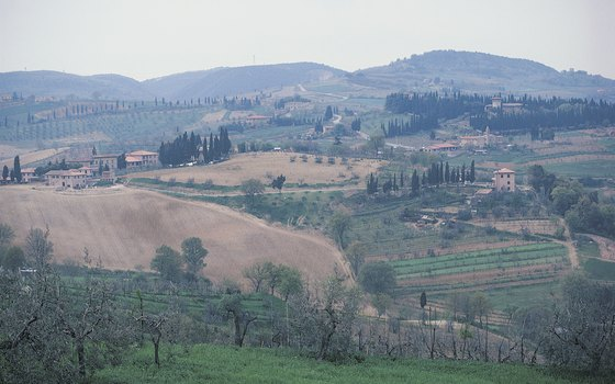 The fertile Tuscan countryside is perfect for farming.