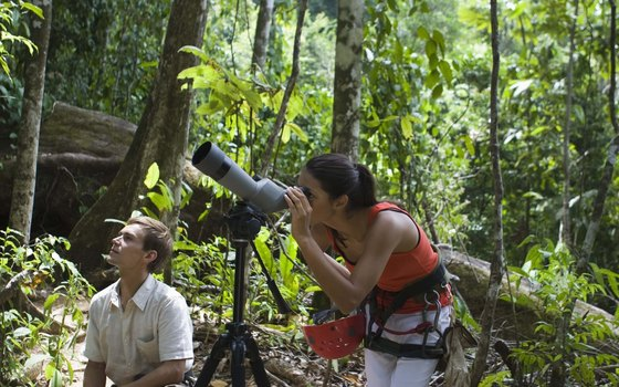 Ecotourism developers view their partnerships as both beneficial and essential to the environments and economies of remote regions.