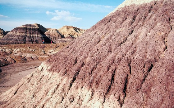 Petrified Forest National Park lies at the southern edge of the Colorado Plateau.