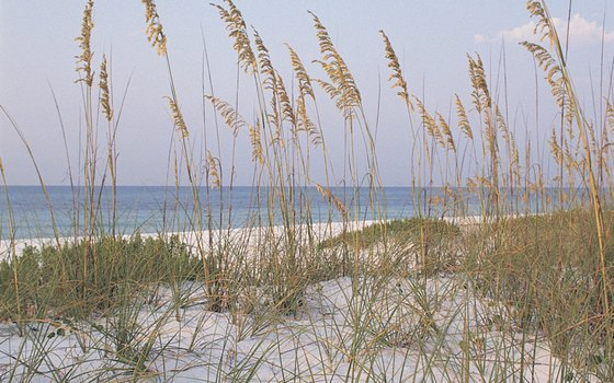 Pensacola Beach is still beautiful in November, but the waters are cool.