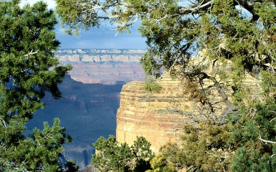 The Grand Canyon is approximately 280 miles from Las Vegas.