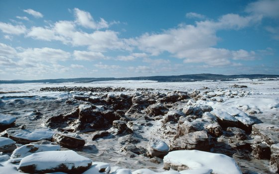 The Bay of Fundy becomes a waterless seabed at low tide.