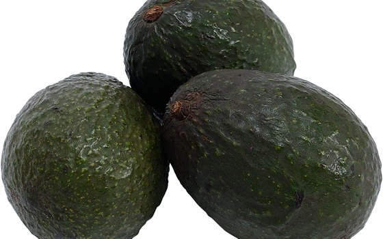 Avocados grow well in the Philippines.