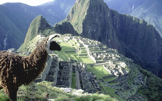 Pack animals are not allowed on the Inca trail, so you must carry belongings yourself or hire a porter.