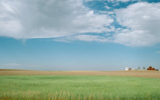 The Canadian prairies are a wide-open landscape.