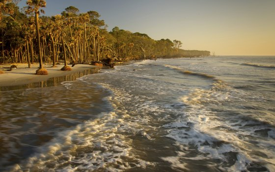 The sun rises on another day at South Carolina's Hunting Island State Park.