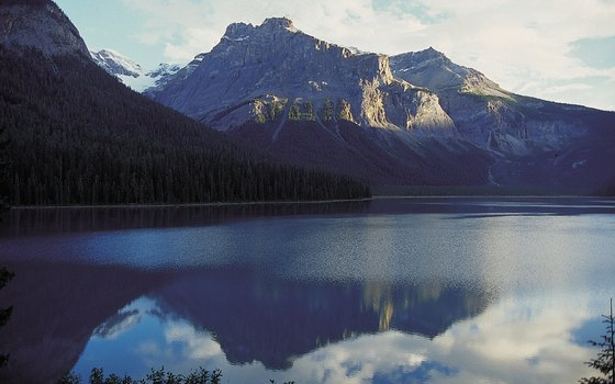 Canadian national parks like Banff offer some of the country's finest wildlife-watching opportunities.
