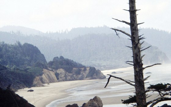 The Oregon Coast area is usually too cold for swimming, but swimming holes are nearby.